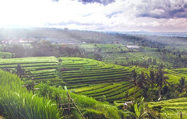 Verhuizen naar Bali Java emigreren naar Indonesië internationale verhuizing groepage diensten